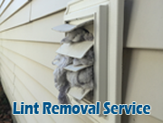 lint removal service